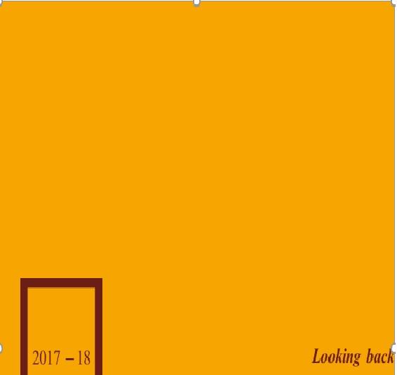 annual_report-2017-2018
